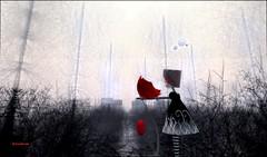 My Heart (anibrm jung) Tags: second life delicatessen nature anibrm jung heart dreams scene art black red