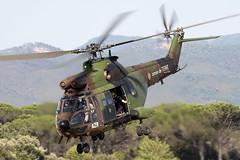 1252_AerospatialeSA330Puma_FrenchArmy_LeLuc (Tony Osborne - Rotorfocus) Tags: alat 2009 aerospatiale sa330 puma french army france le luc provence eaalat