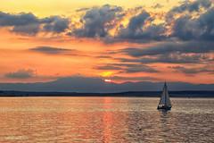 Sailing on gold (malioli) Tags: sun sunset dusk sea adriatic boat sailing sky clouds canon croatia hrvatska europe krk