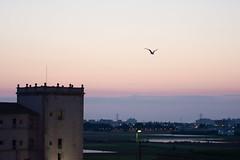 Amanecer en Valencia 39 (dorieo21) Tags: sunrise amanecer aurore aurora alba sky cielo ciel nubes clouds nuage nuvola landscape panorama panoramique panorámica
