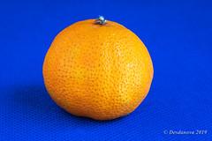 Tangerine (Desdanova) Tags: red macro macromondays orange tangerine stockton california unitedstatesofamerica