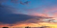 2019-07-25 19-51-28_003a_Vivitar VMC 50mm f1.7 (wNG555) Tags: 2019 arizona phoenix vivitarautovmc50mmf17 sunset fav25 fav50