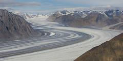 Kaskawulsh Glacier (Steven Olmstead) Tags: glacier ice mountains snowcapped yukon aerial
