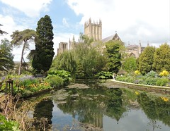 Bishop's Palace Gardens (Kevin Pendragon) Tags: wells cathedral building trees green dark water pond reflection sky blue clouds light sun sunshine outdoors outside naturephotography nature somerset westcountry plants
