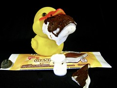 oops ~grin~ (muffett68 ☺ heidi ☺) Tags: whenphotoshootsgowrong ducky icecreamsandwich hcs melty melted oops flickrlounge saturdaytheme sloppy mesy