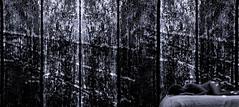 19-237 (lechecce) Tags: abstract 2019 blackandwhite shockofthenew sharingart