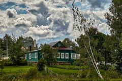 House on the outskirts (Staropramen1969) Tags: house wooden landscape birch russia haus holz landschaft birke russland maison paysage en bois bouleau russie
