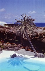 Jameos del Agua (•Nicolas•) Tags: 200iso camera canaryislands collection color colorplus espagne holidays kodak lanzarote leicaiiif nicolasthomas spain vacances vintage palmtree pool c41