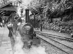 L2019_2137 - SEA LION at Lhen Coan Station - Groudle Glen Railway (www.jhluxton.com - John H. Luxton Photography) Tags: 2019 ellanvannin isleofman johnhluxtonphotography leica leicam leicam262 leicamtyp262 wwwjhluxtoncom lonan garff schmalspurbahnen schmalsupurbahnen railway narrowgauge