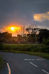 Slow (Jez22) Tags: jeremysage photography sunset slow road norfolk england copyright rural orange sun evening light halvergate setting