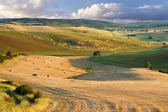 Colline  Toscane (Va e VIENI) Tags: art ambrosioni colline colore paesaggio estate oro