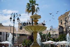 (Fernando Crego) Tags: sanlucar cadiz andalucia xt2 fujifilm 35mm cabildo plazadelcabildo palomas pigeon fontain fuente agua water cielo azul