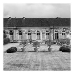 L'ancienne abbaye de Molesme (DavidB1977) Tags: france bourgogne côtedor molesme abbaye plantes pots carré square monochrome bw nb fujifilm x100f