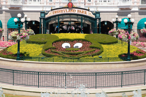 Mickey Mouse flowerbed