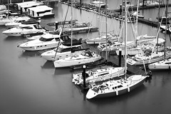 Brighton Marina (davidheath01) Tags: amateur amateurphotographer amateurphotography abandoned beauty beautiful boats beach blackandwhite boat contrast dslr d850 dof digital holiday holidays hotel happy history kiss kissed landscape landscapephotography light love monochrome metal nikon nikond850 open outside old ocean oldtown picture photography photograph photographer photo paradise reflection rope river sea sun sky seascape summer travels traveling travel timber travelling vacation view water wood weather white yacht