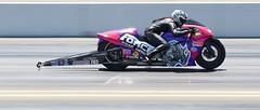 DSC_7321 (stephenkirsch) Tags: nikon d600 70200mm afs g nikkor 28 nhra drag drags race racing 2019 national hot rod association speed action panning dynamic motorcycle bike sport motorsport motor