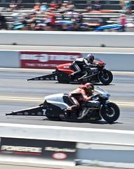 DSC_7191 (stephenkirsch) Tags: nikon d600 70200mm afs g nikkor 28 nhra drag drags race racing 2019 national hot rod association speed action panning dynamic motorcycle bike sport motorsport motor
