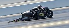 DSC_7189 (stephenkirsch) Tags: nikon d600 70200mm afs g nikkor 28 nhra drag drags race racing 2019 national hot rod association speed action panning dynamic motorcycle bike sport motorsport motor