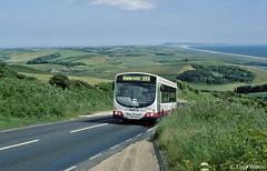 YS03ZKE First Devon & Cornwall 62408 (theroumynante) Tags: ys03zke first devon cornwall 62408 scania wright eclipse abbotsbury jurassic coast bus buses lowfloor road transport singledeck
