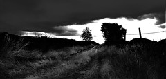 Homeward Bound (kevin.fahy1) Tags: monochrome contrast outdoor moody blackandwhite uk bw silhouette abstract grass sky road path cloud tree