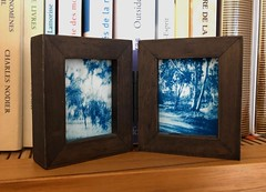 Tiny travel frame (Daphnesalbums) Tags: holga cyanotype