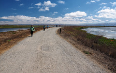 On the level (LeftCoastKenny) Tags: baylandsnaturepreserve shorelinepark hikers sanfranciscobay water levee mountains clouds tral path brush grass