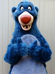 Baloo (meeko_) Tags: baloo bear junglebook characters disneycharacters disneyshollywoodstudiosentrance disneys hollywood studios disneyshollywoodstudios themepark walt disney world waltdisneyworld florida