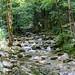 Herisson_Waterfalls_2019_12019