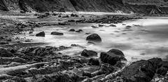 Bowling Ball Beach (allentimothy1947) Tags: algee bw blakandwhite bowlingballbeach california mendocinocounty nd10 green hdr ocean polarizingfilter reflection rocks trees water ca1 panoramic pacificocean