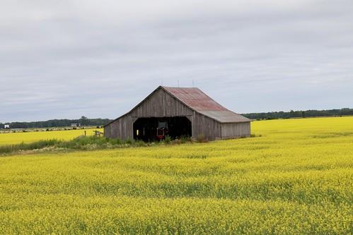 The barn stood alone in flat landscape