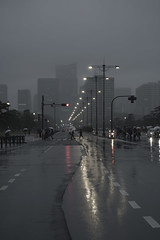 Heisei Period (B Lucava) Tags: tokyo rain foggy people street building zebra crossing streetlight line kokyogaien chiyada marunouchi uchibori city cityscape zeiss touit2850m touit e