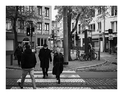 171022_152123_oly-PEN-f_antwerpen (A Is To B As B Is To C) Tags: aistobasbistoc b belgië belgium antwerpen antwerp sintpaulusstraat zebra crossing pedestrians people street streetphotography streetlife bw blackwhite blackandwhite monochrome city olympus penf sidewalk trees bike hat