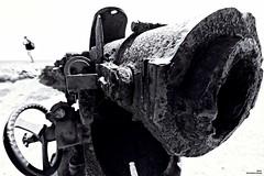 Dans la ligne de mire (Un jour en France) Tags: canon canoneos6dmarkii canonef1635mmf28liiusm noiretblanc noiretblancfrance humour monochrome