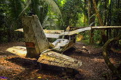 Air To Ground (roijoy) Tags: plane wreck aircraft 7366 jungle belize