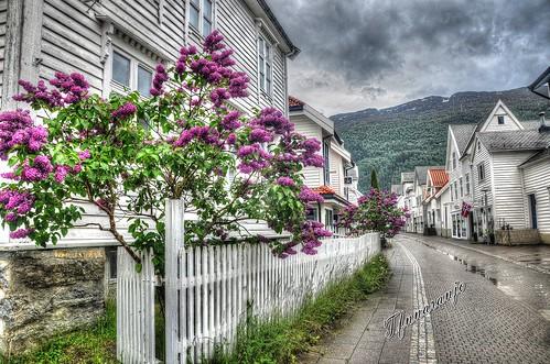 Dia de lluvía ( Noruega)   HDR
