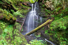 untitled-04584.jpg (ia.n) Tags: water waterfall scotland ayrshire fairlie largs walk trail hills cliff unlimited trees ferns green river falls coast soft outside