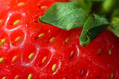 Macro Mondays - Complimentary colours (that Geoff...) Tags: strawberry macromondays complimentarycolours redgreen food closeup canon70d