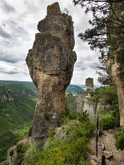 Gorges de la Jonte (penelope64) Tags: lozère olympusem1 france cévennes rochers gorgedelajonte paysage nature falaise