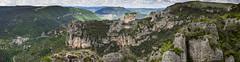 Au-dessus du Rozier (penelope64) Tags: lozère olympusem1 france cévennes panoramique rochers gorgedelajonte paysage nature falaise