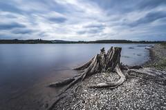 Poulaphouca Reservoir, Ireland (darkmavis) Tags: blessington bridge ireland lake lakes landscape liffey longexposure nature water wicklow burgage countywicklow