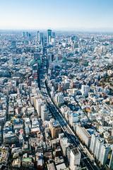 Roppongi Hills Mori Tower: Tokyo City View, Shibuya Route (Dick Thomas Johnson) Tags: japan tokyo minato roppongi 日本 東京 港区 六本木 六本木ヒルズ roppongihills 六本木ヒルズ森タワー roppongihillsmoritower 森タワー moritower 東京シティビュー tokyocityview shibuya 渋谷 首都高速道路 首都高 shutoexpressway expressway 高速道路