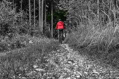 Selfie on a Stony Path (suzanne~) Tags: selfie path woods bw selectivecolor redjacket bike bicycle germany bavaria