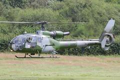 XZ290 - 1976 build Westland Gazelle AH.1, cheery wave from the crew prior to departure from Barton (egcc) Tags: 1489 aac aerospatiale armyaircorps barton cityairport egcb gazelle gazelleah1 helicopter lightroom man manchester sa341 westland xz290