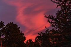 Sunrise, Fall River Rd, Estes Park, Rocky Mountain National Park, Colorado (aud.watson) Tags: america northamerica us usa colorado rockymountainnationalpark estespark fallriverroad mountain valley river rock grassland winter ice snow sunrise dawn