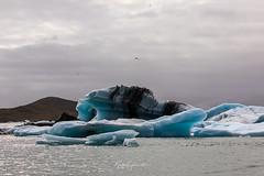 Ice (Kjartan Guðmundur) Tags: iceland ísland lagoon ice iceberg glacierlagoon canoneos5dmarkiv canonef100400mmf4556lisiiusm arctic nature kjartanguðmundur
