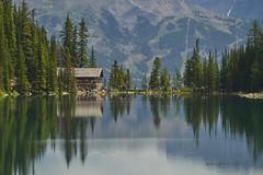 The Lake Agnes Teahouse (Valley Imagery) Tags: lake agnes teahouse banff louise hike history landscape canada alberta reflection mountain sony a99ii 70400gii