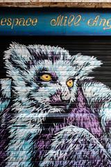 DSCF2730 (LexomIA) Tags: bordeaux street streetart urbain streetphotography