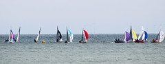 Dinghy race (Gill Stafford) Tags: gillstafford gillys image photograph wales northwales conwy llandudno victorian sea tourism recreation scorpiannationals dinghy championships race 2019