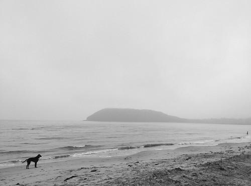 Владивосток. Арина Эртман.2019 (11) ©  arina.ertman