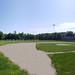 Ferry Street Baseball Field